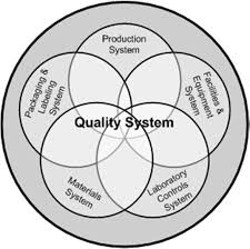 Quality System in Pharmaceuticals